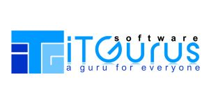 iT Gurus software