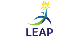 Leap Research