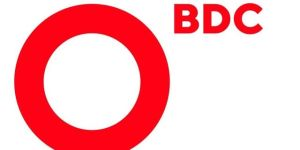 BDC Consulting