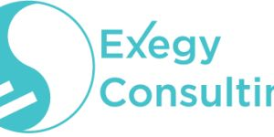 Exegy Consulting