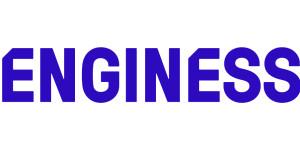 Enginess