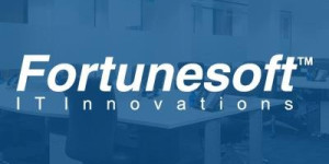 Fortunesoft IT Innovations, Inc.