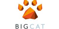 Big Cat Agency