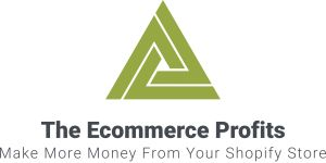 The Ecommerce Profits
