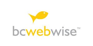 BC WEB WISE PVT LTD