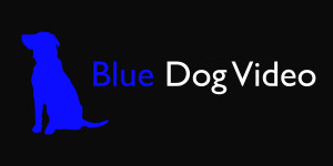 Blue Dog Video
