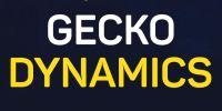 Gecko Dynamics