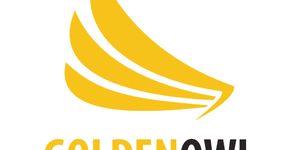 Golden Owl Consulting Ltd.