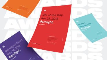 Bornfight - Award 1