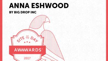 Big Drop Inc - Award 8
