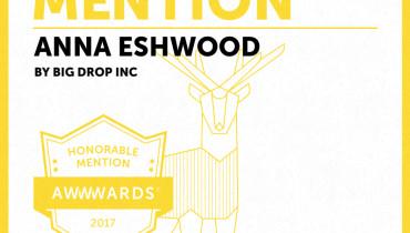 Big Drop Inc - Award 9