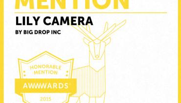 Big Drop Inc - Award 11