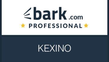 KEXINO - Award 9