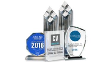 Amplitude Digital Inc. - Award 1
