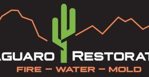 Saguaro Restoration