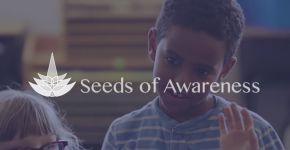 Seeds of Awareness