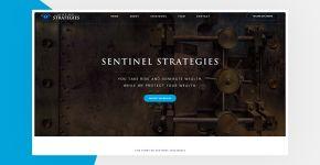 Sentinel Strategies