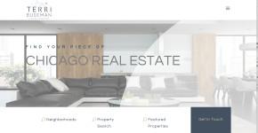 Terri Buseman - Chicago Real Estate