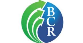 Business Credit Report, Inc.