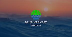 Blue Harvest Fisheries