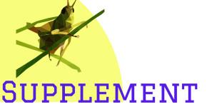 supplementcricket.com