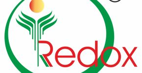Redox Industry