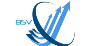 BSV consulting