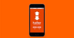 Haller
