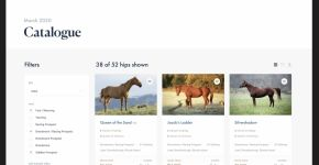 Wanamakers Online Thoroughbred Auctions