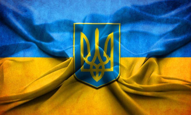 IGODEV LLC - Photo - 3