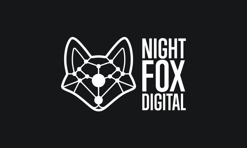 Night Fox - Photo - 1