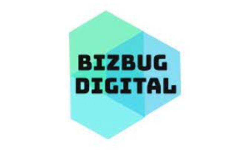 BIZBUG Digital - Photo - 2
