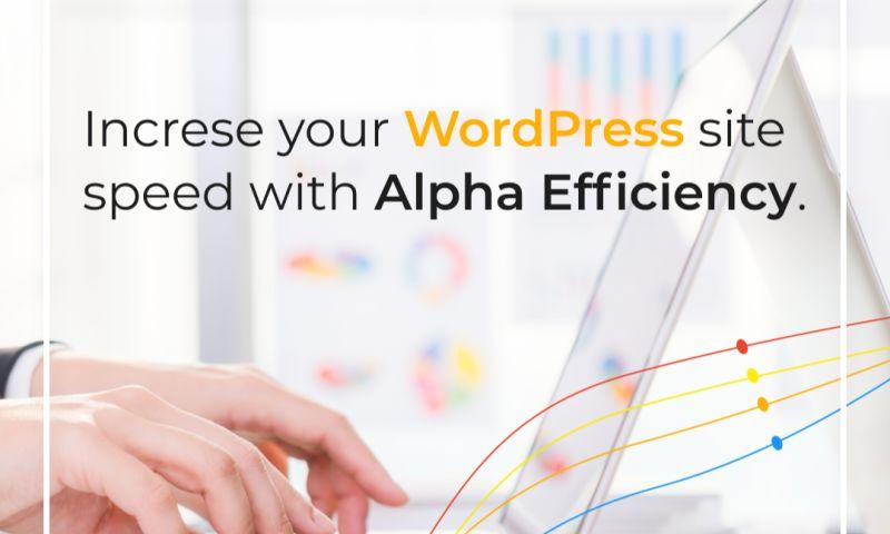 Alpha Efficiency - Photo - 1