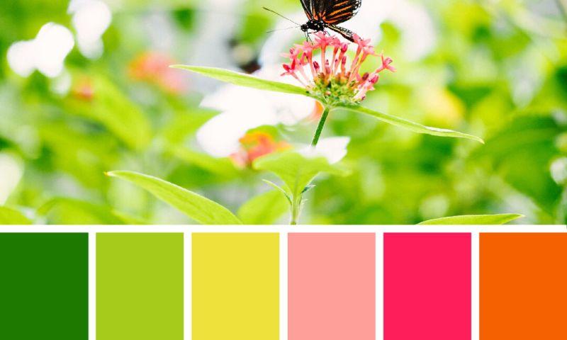 Creative Blend Design - Photo - 3