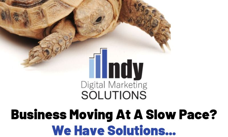 Indy Digital Marketing Solutions - Photo - 2