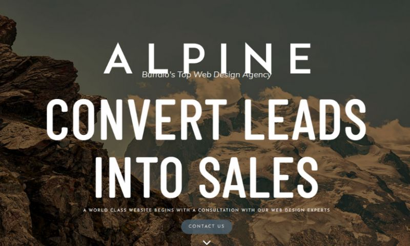 Alpine Design Buffalo - Photo - 1
