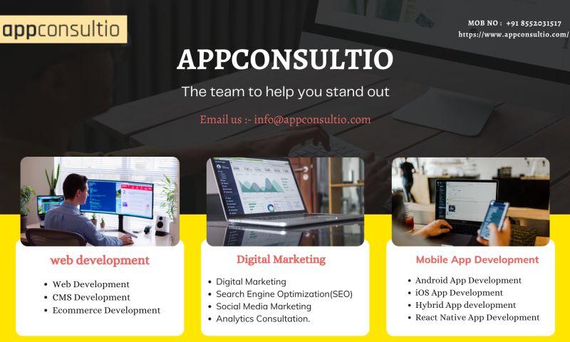 Appconsultio Websolutions - Photo - 2