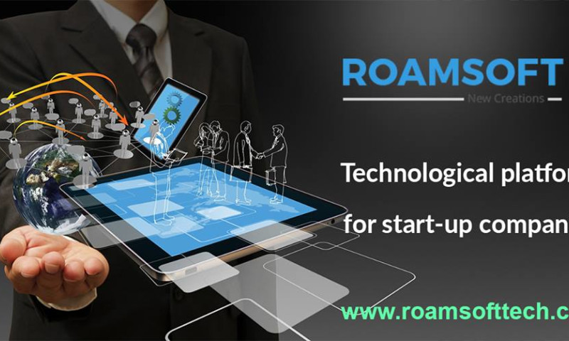 Roamsoft Technologies Pvt Ltd - Photo - 3