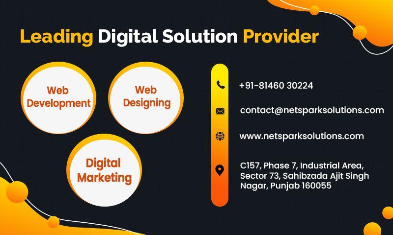 Net Spark Solutions Pvt. Ltd. - Photo - 3