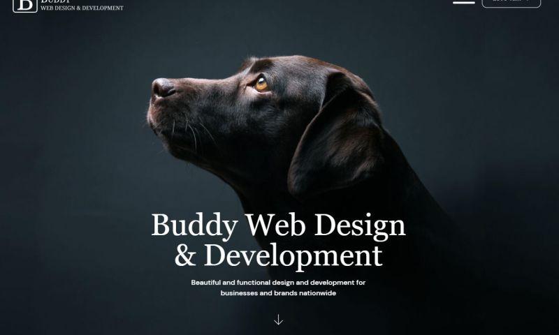 Buddy Web Design & Development - Photo - 1