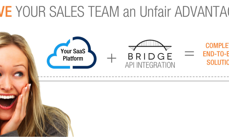 Bridge Software - API Integration Services - Photo - 2