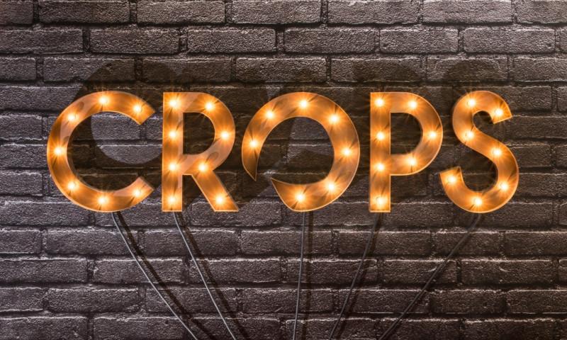 CROPS - Photo - 1