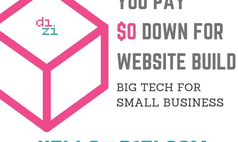D1Zi Digital Marketing Agency Kitchener - Photo - 3
