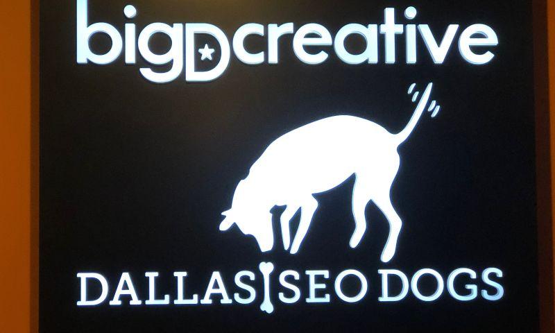 Dallas Dogs - Photo - 3