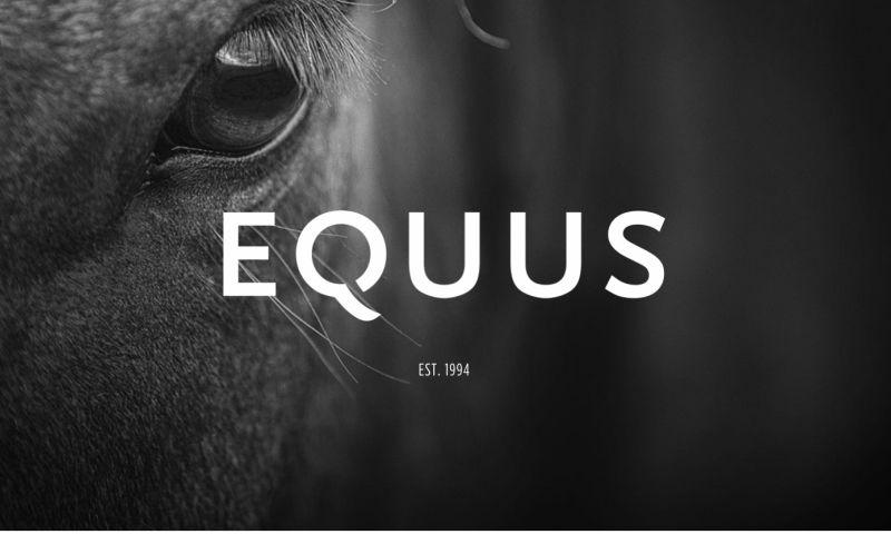 Equus Branding & Design - Photo - 1