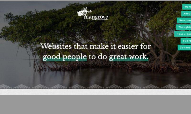 Mangrove Web Development - Photo - 2