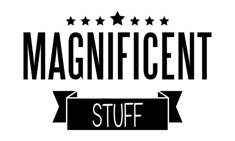 Magnificent Stuff Ltd. - Photo - 2