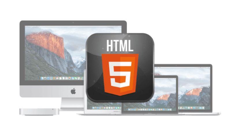 Elite Web Design - Photo - 2