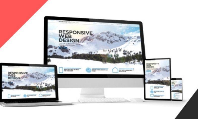 Bolinc Online Services - Photo - 2