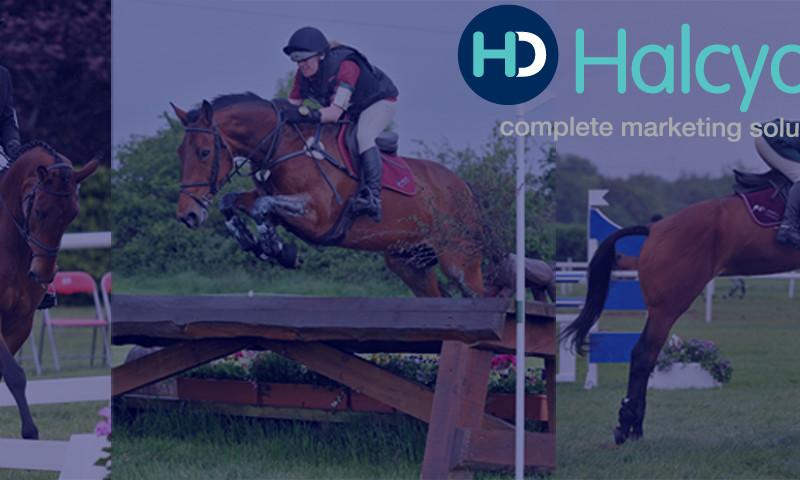 Halcyon Days Ltd - Photo - 3